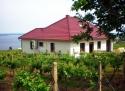Vila Pálava Chaty a chalupy - výběr ubytování